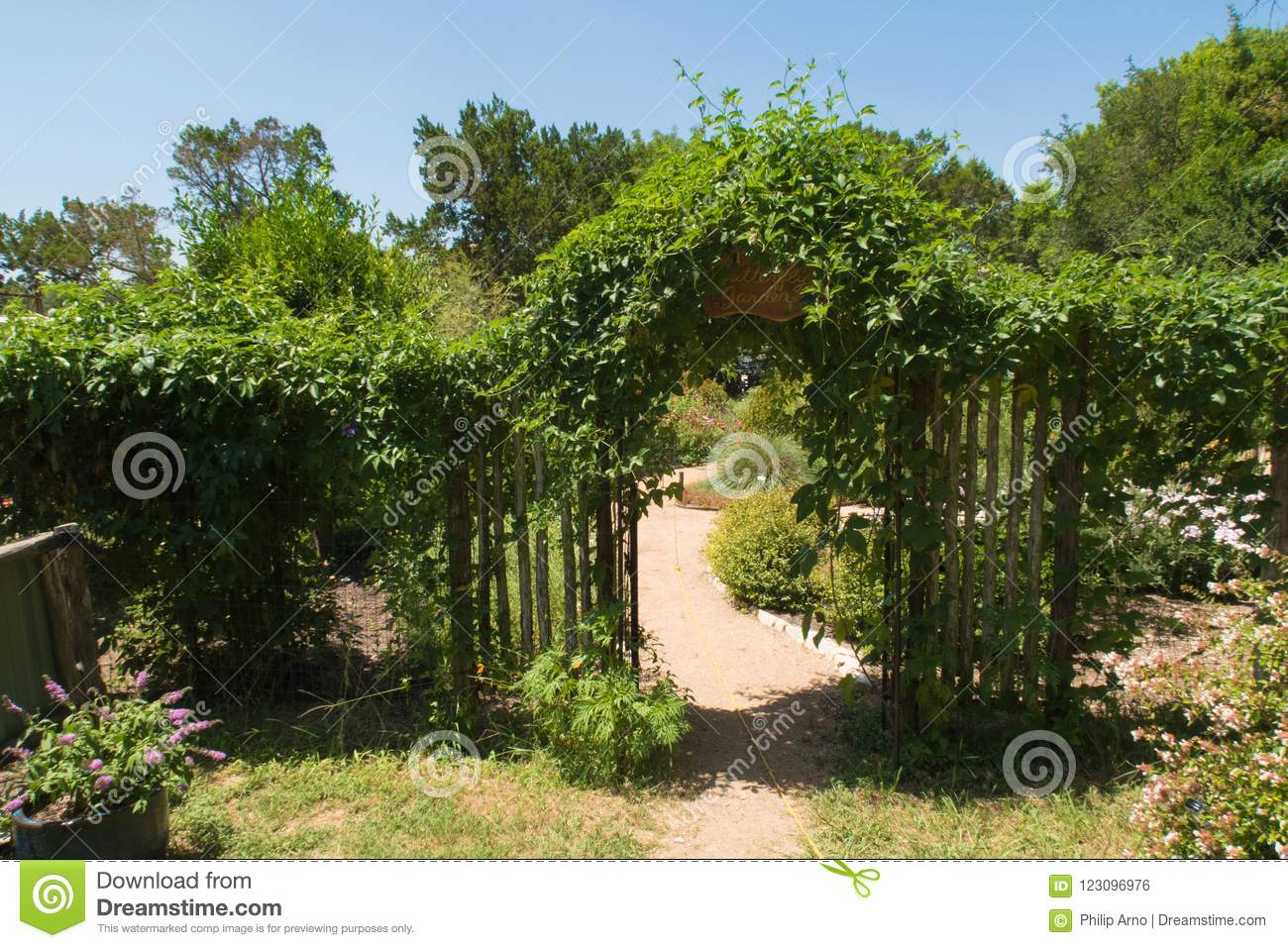 A Vine Covered Trellis and a Gate Stock Photo   Image of habitat ...