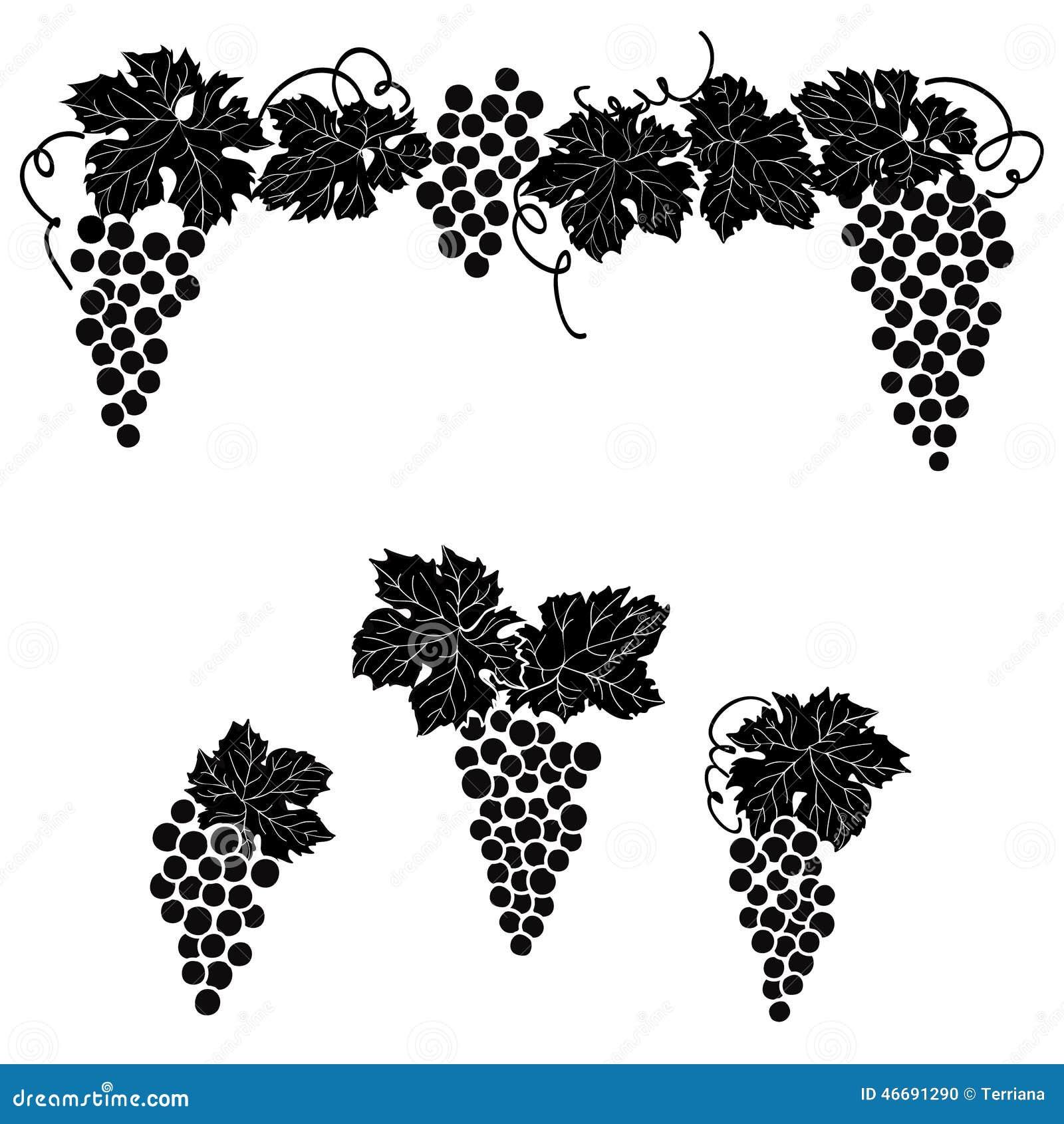 Vine Grape Ornament Element Decor Set Stock Illustration
