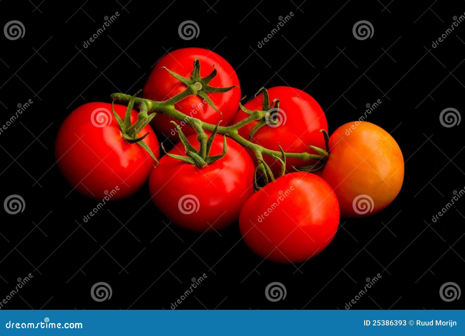 Vine tomatoes on black