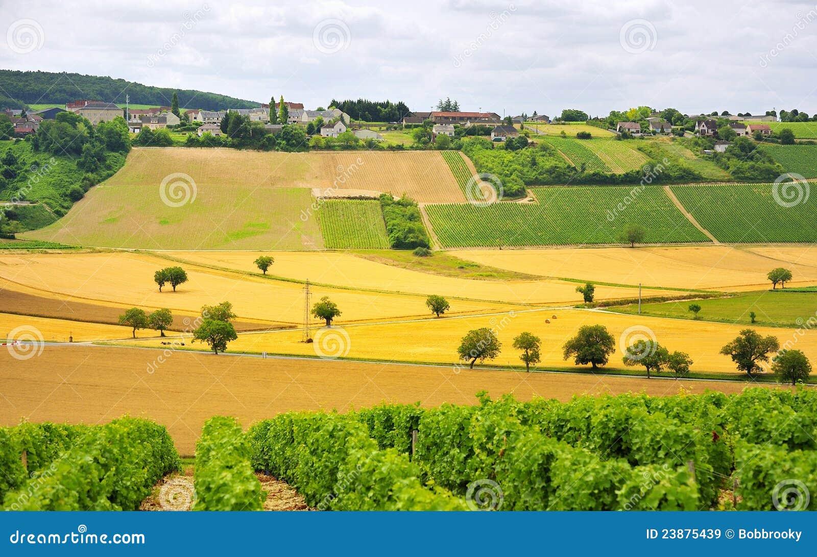 Vines and Agriculture, Sancerre, France