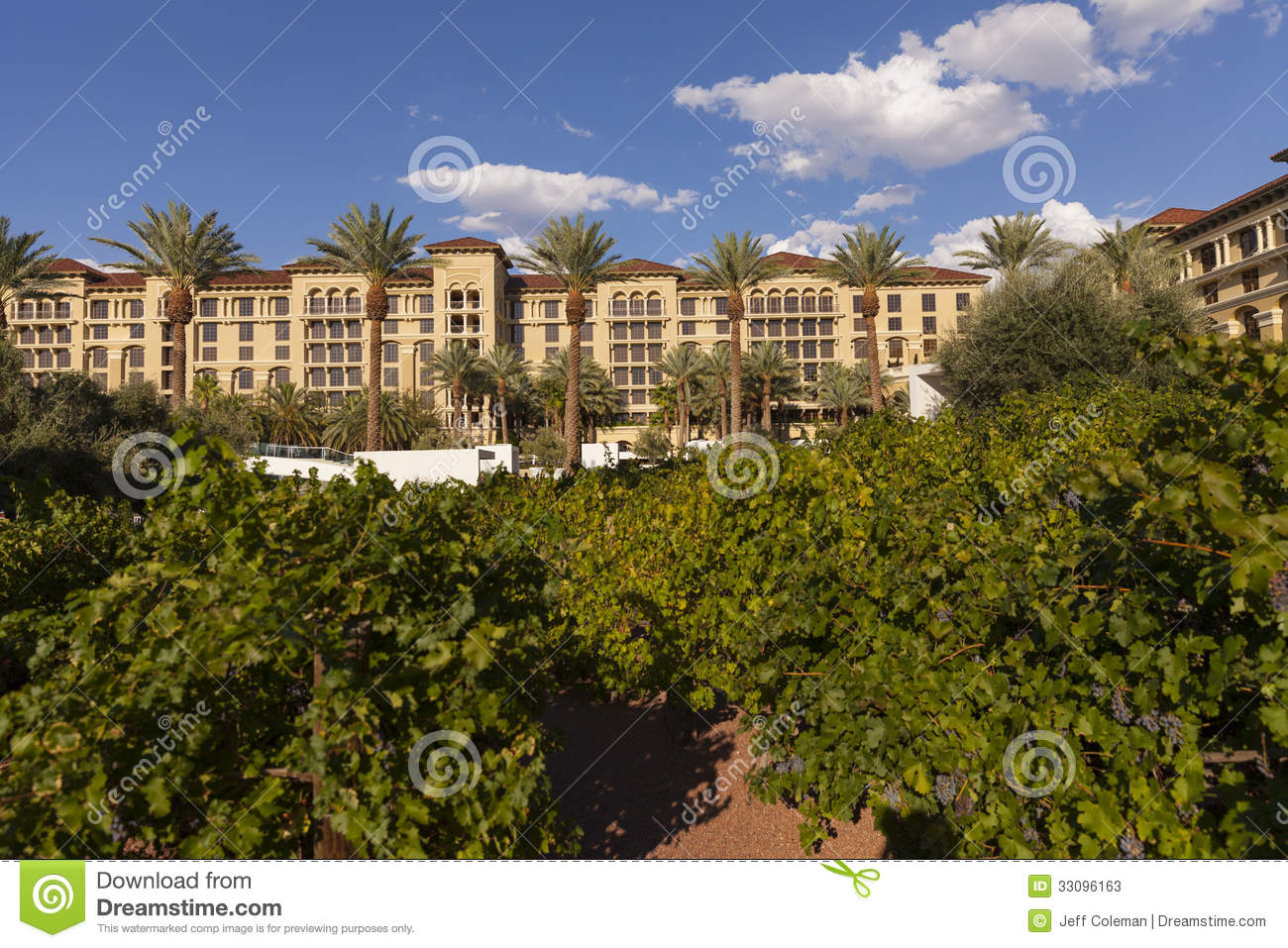 The Vineyard Hotel And Spa