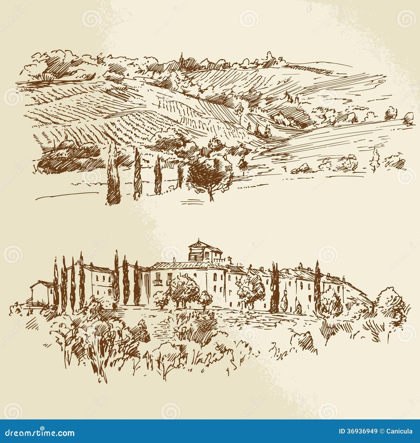 Landscape Illustration Vector Free: Vineyard, Romantic Landscape Royalty Free Stock Images