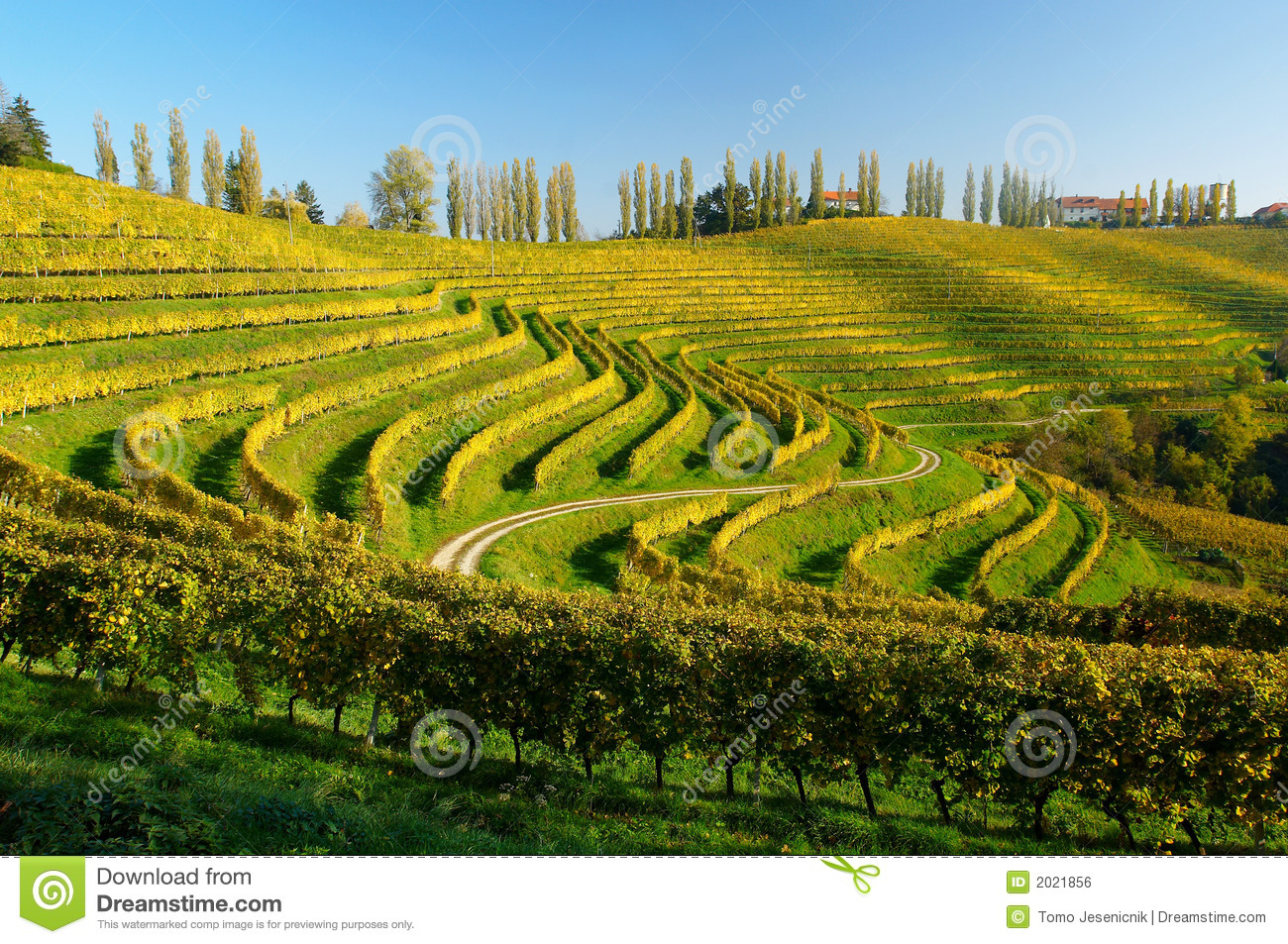 farming in south-east slovenia download
