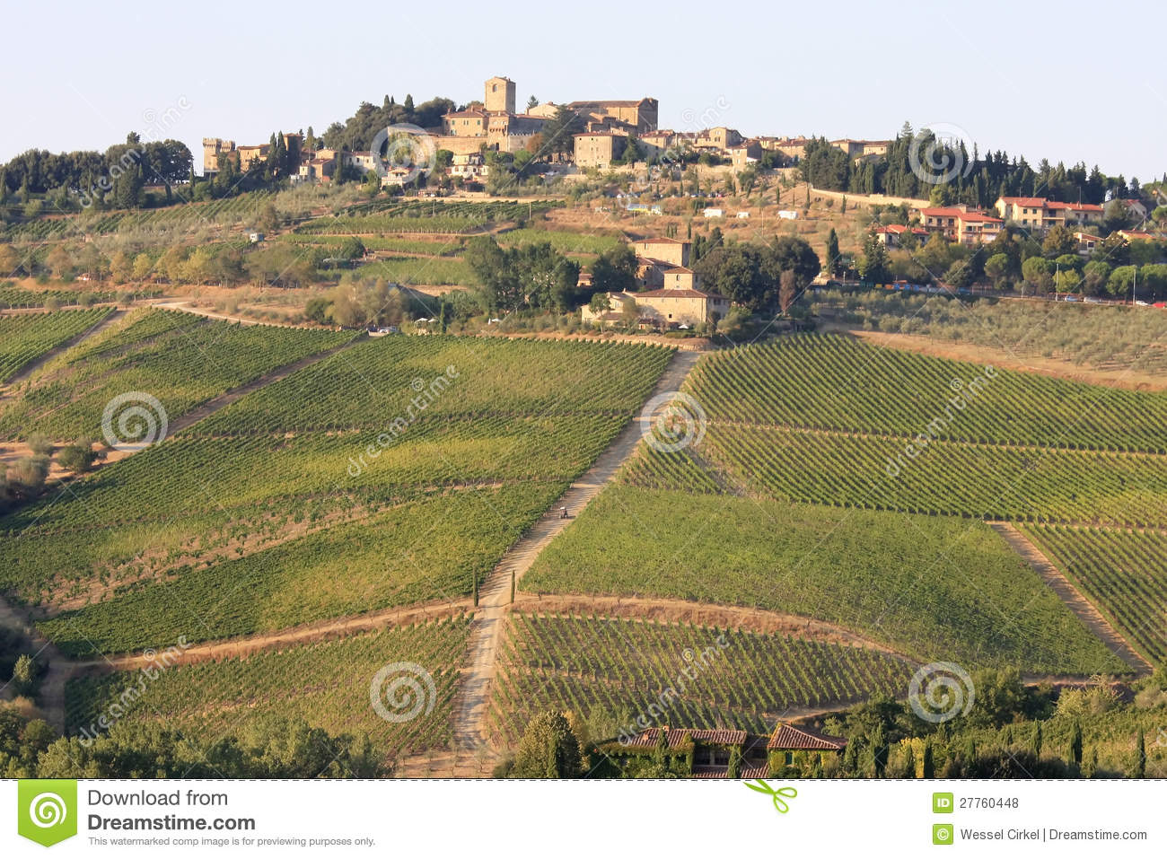 Vineyards of Radda in Chianti, Tuscany, Italy