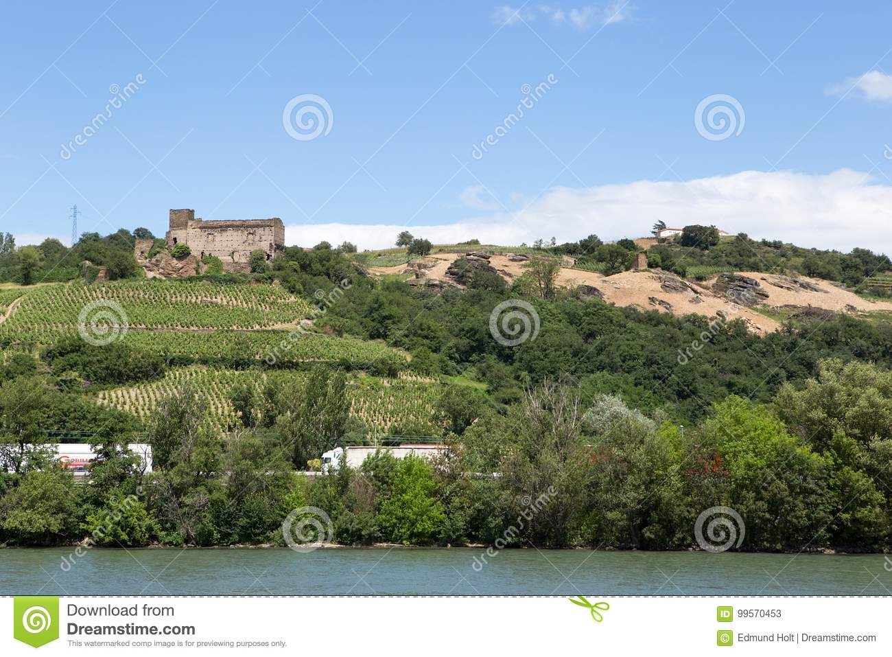 Vineyards by the River Rhone, France