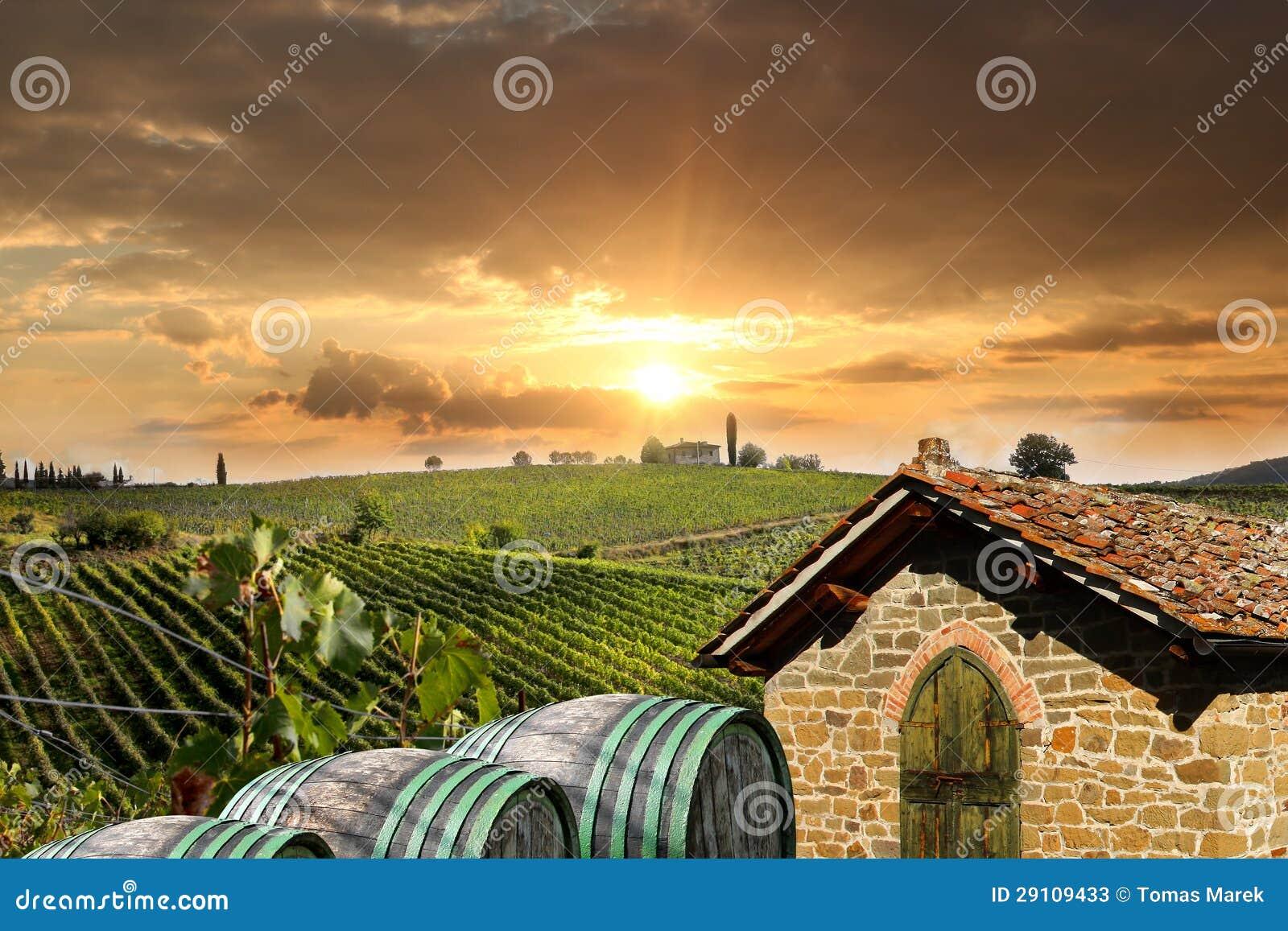 Vineyeard w Chianti, Tuscany, Włochy, sławne ziemie