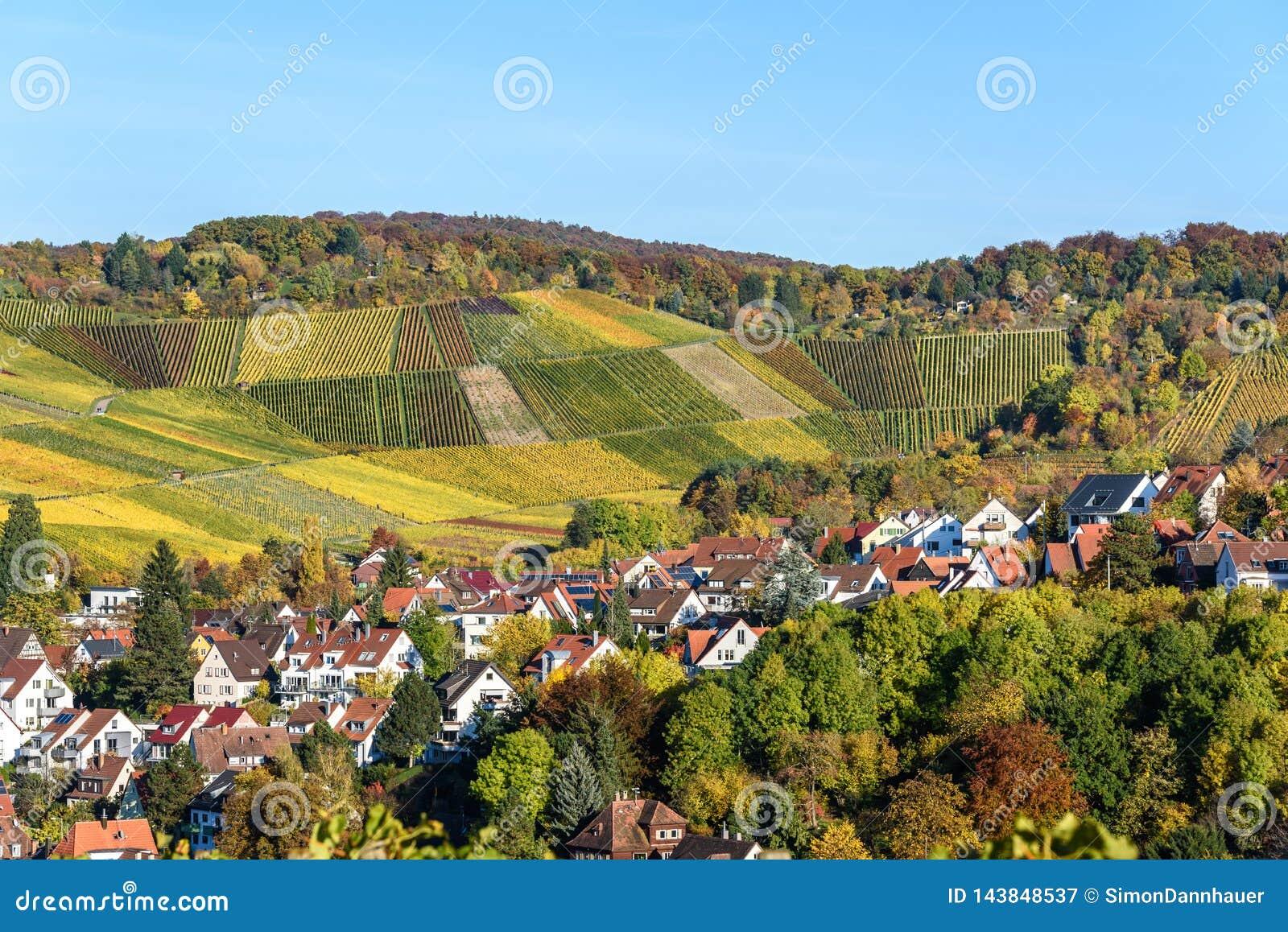 Ving?rdar p? Stuttgart, Uhlbach p? den Neckar dalen - h?rligt landskap i autum i Tyskland