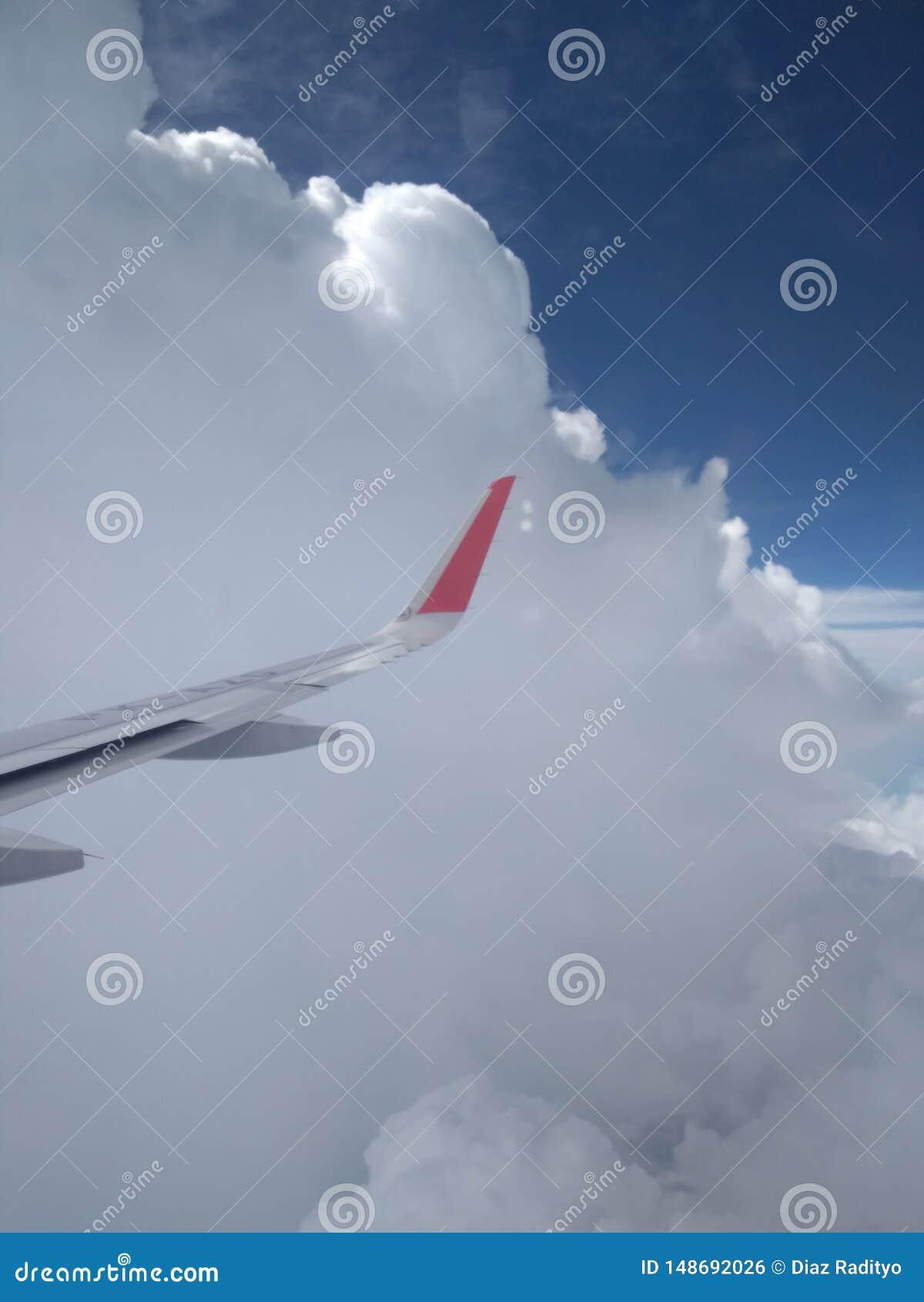 Vingar av flygplanet i himlen