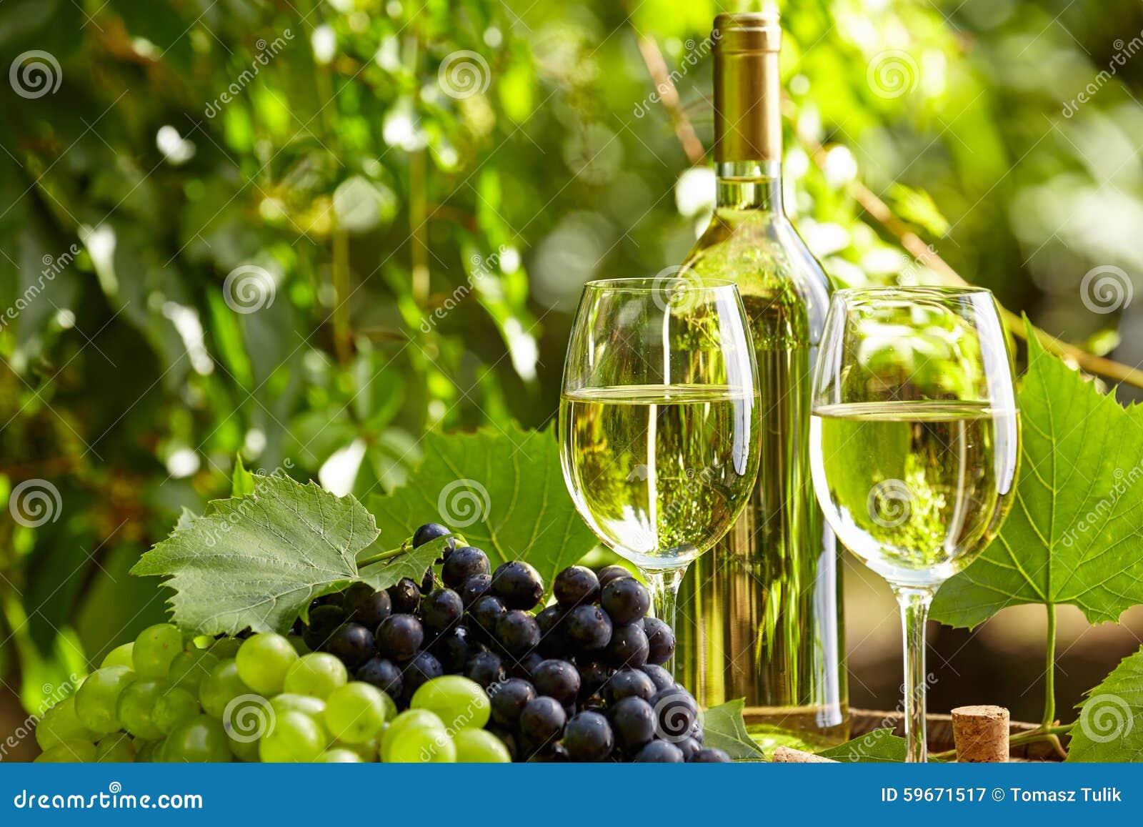 Vino bianco con il bicchiere di vino e l 39 uva sul terrazzo del giardino immagine stock immagine - Giardino sul terrazzo ...