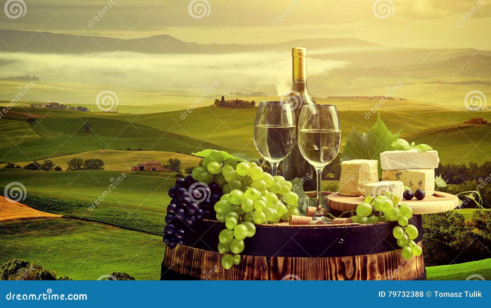Vino rojo con el barril en viñedo en Toscana verde