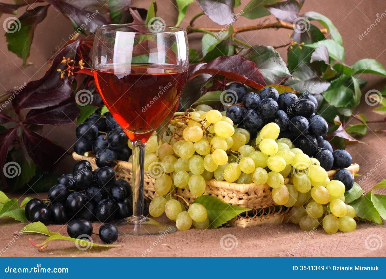 Vino rojo de la composición del vino