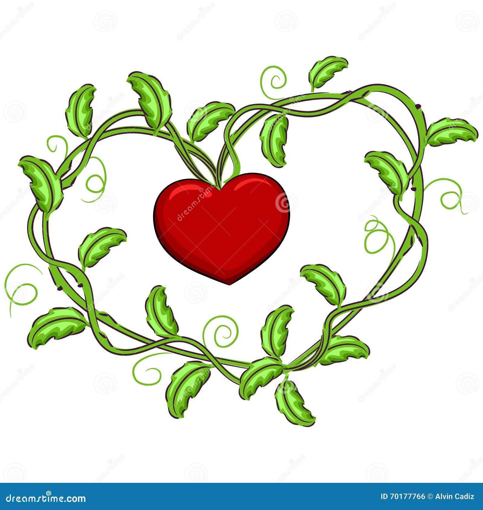 Vinrankor som bildar en hjärta Shape