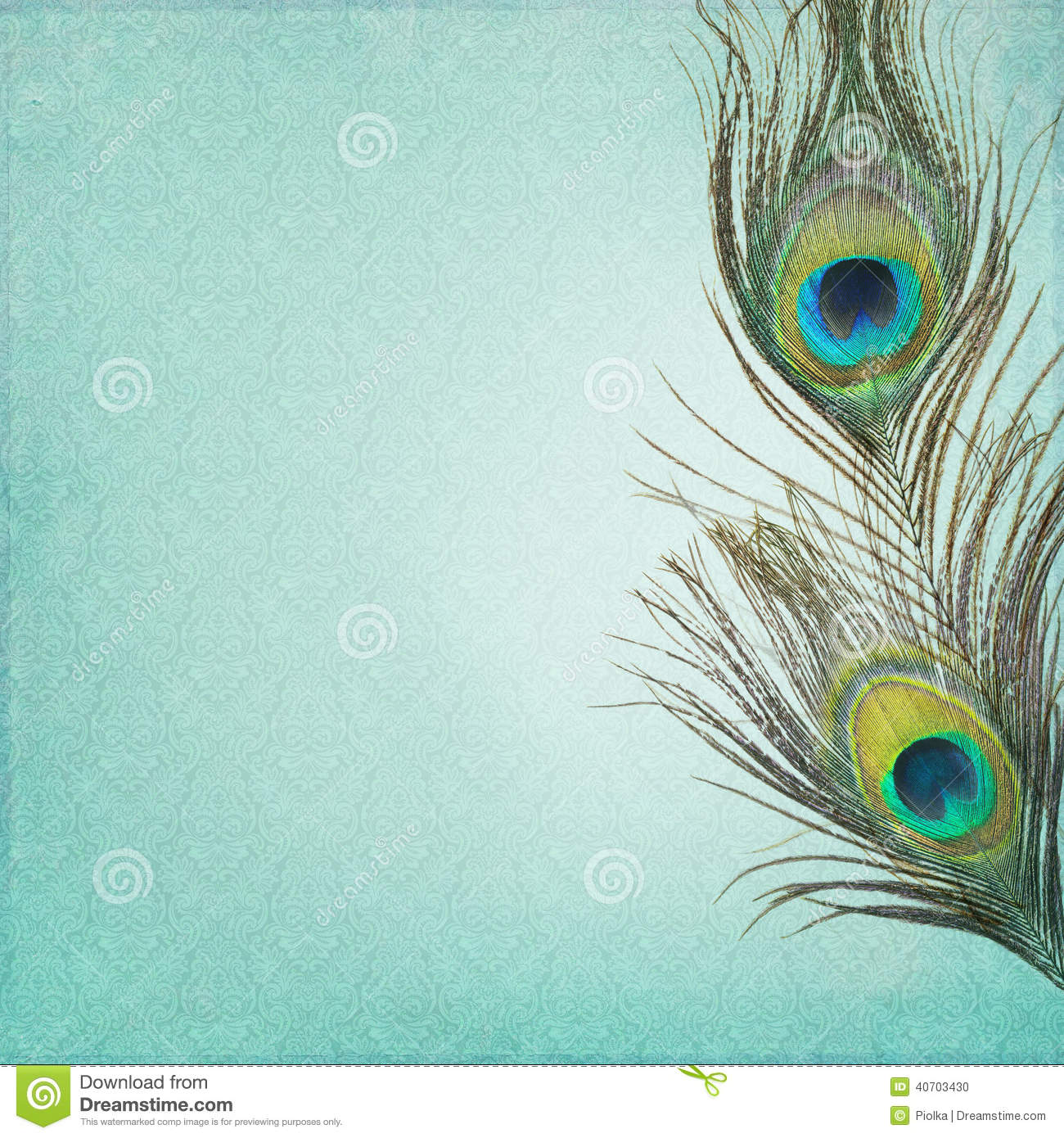 Vintage Background With Peacock Feathers Stock Photo
