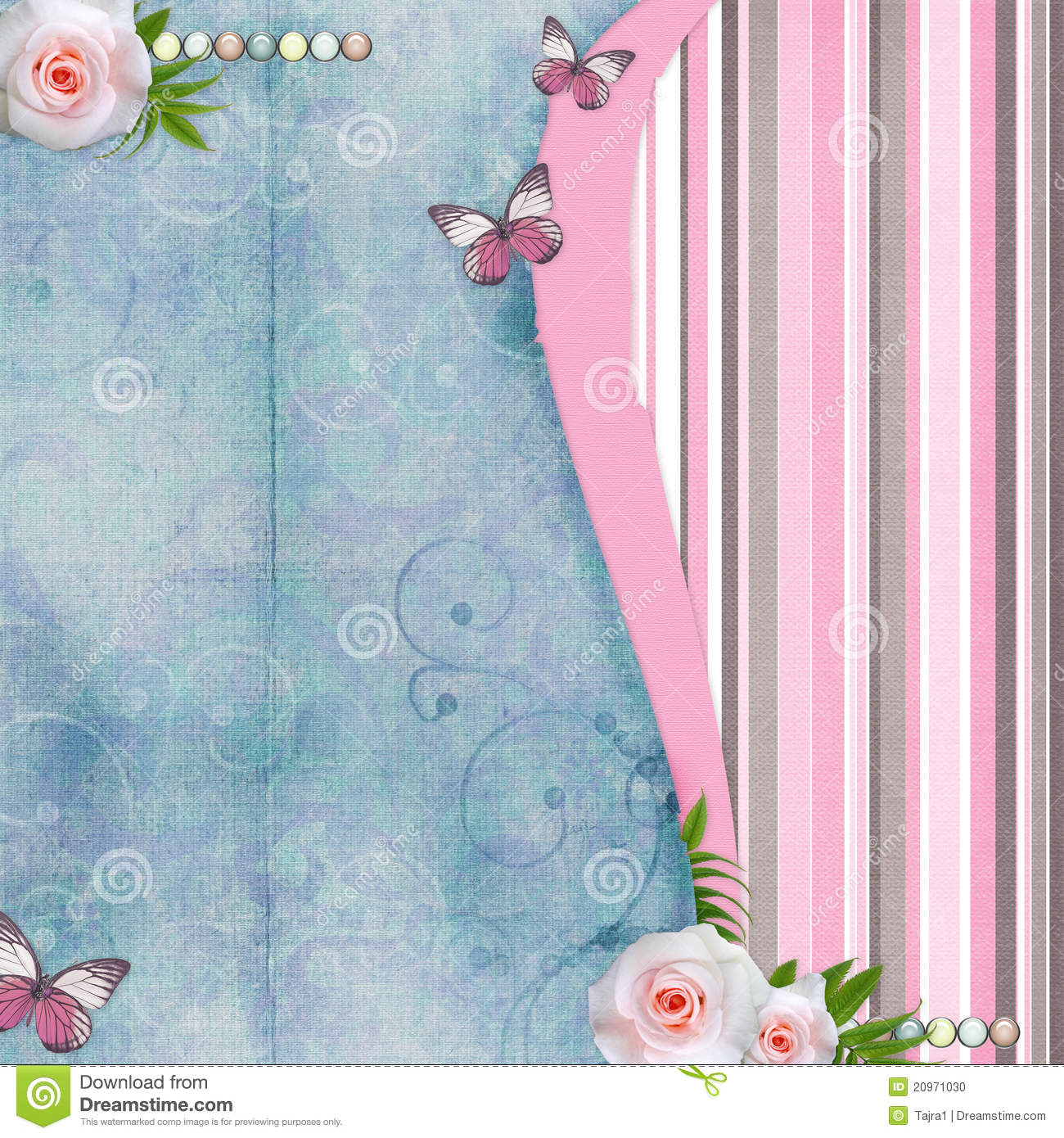 vintage background with pink roses  butterfly stock