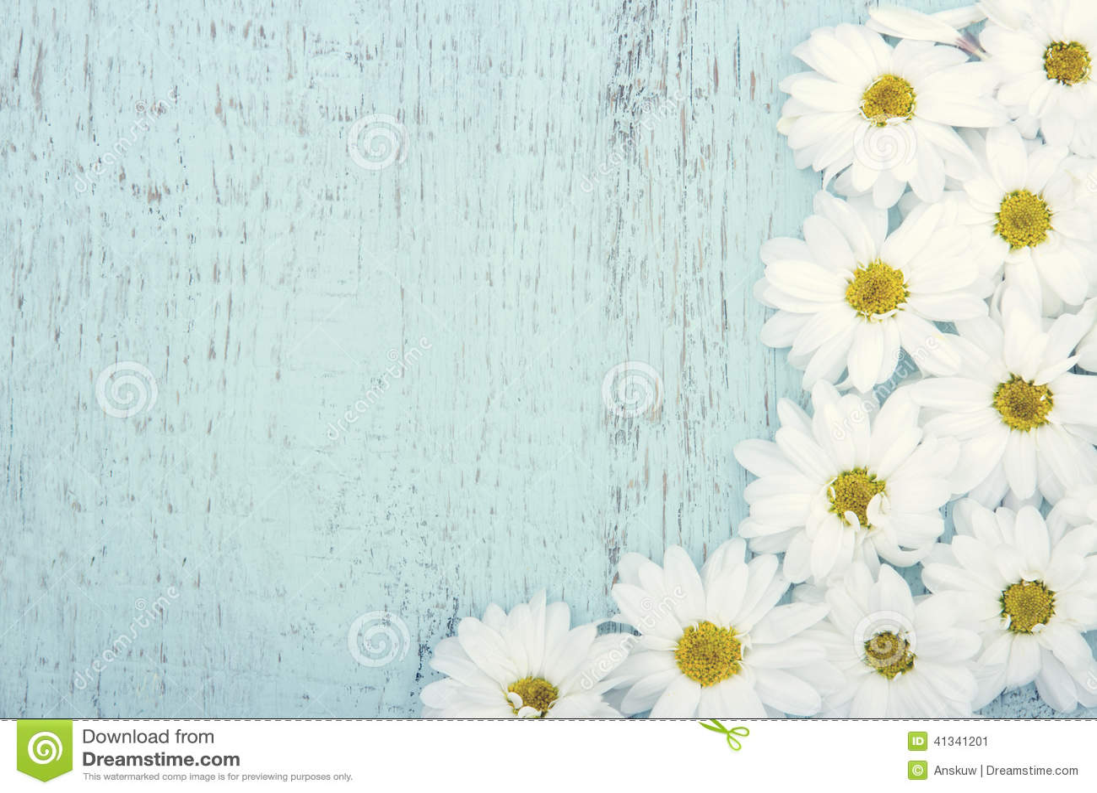 Vintage daisies background