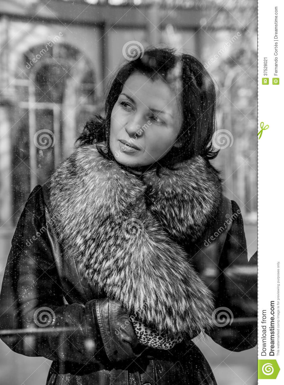 be35e8f03618d Vintage.Beautiful Woman In Winter.Beauty Fashion Model Girl In A ...