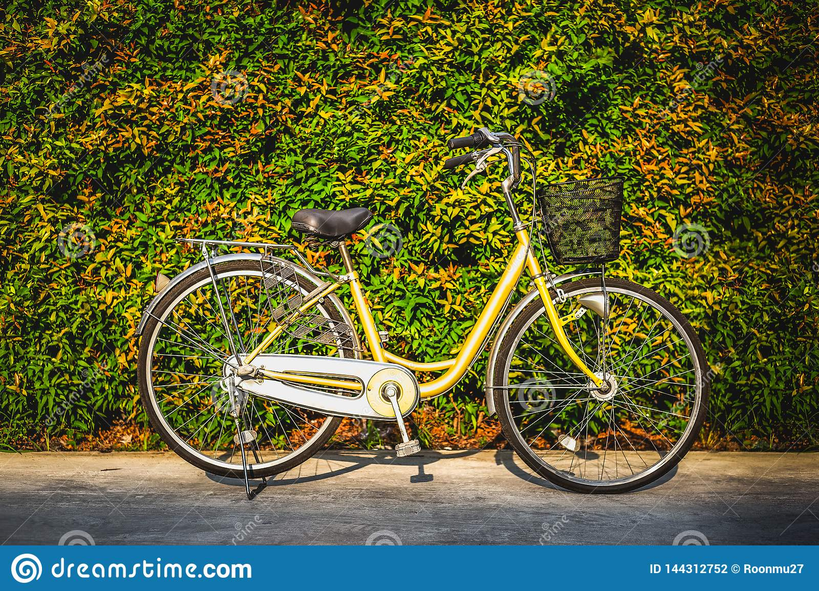 The vintage bicycle on colorful leaves wall background