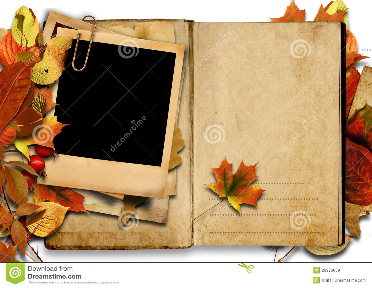 Vintage Book With Polaroid Frame, Autumn. Stock Illustration ...