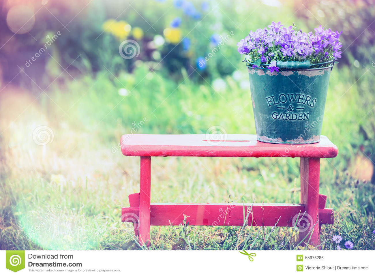 Backyard Summer Background :  with garden flowers on red little stool over summer nature background