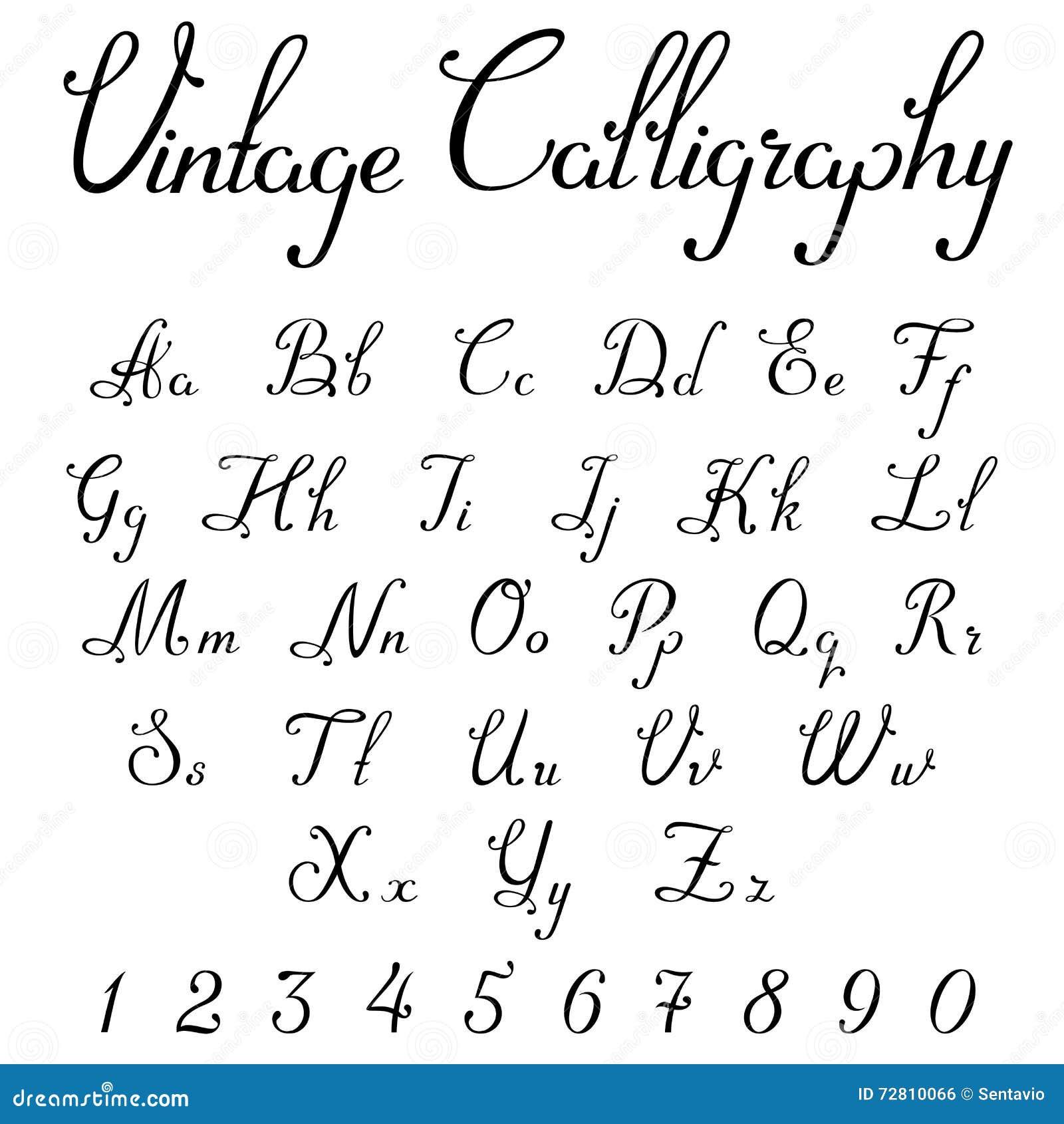 Vintage Calligraphic Script Font Vector Letters