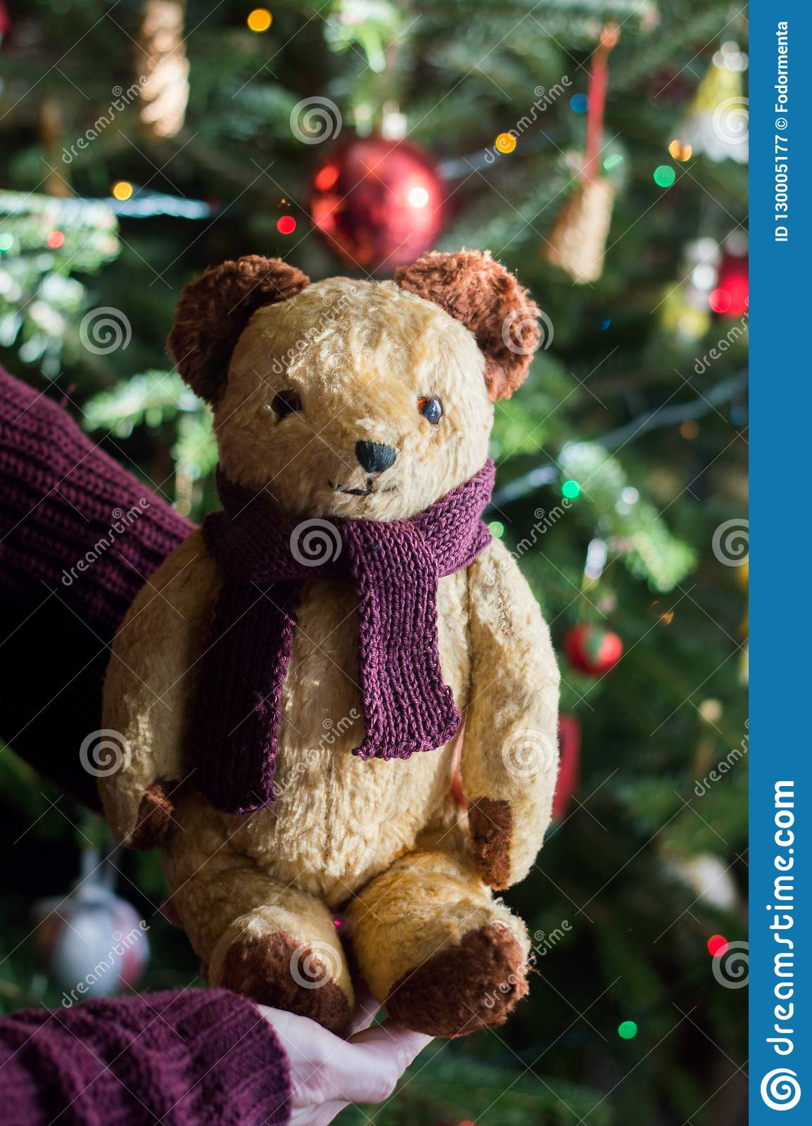 49b01c11de Child hold in hand a vintage stuffed teddy bear toy - its a christmas  present. In the background a decorated christmas tree with light garlands  and glass ...
