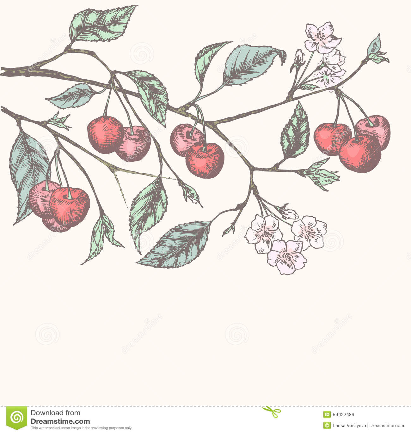 Vintage cherry background