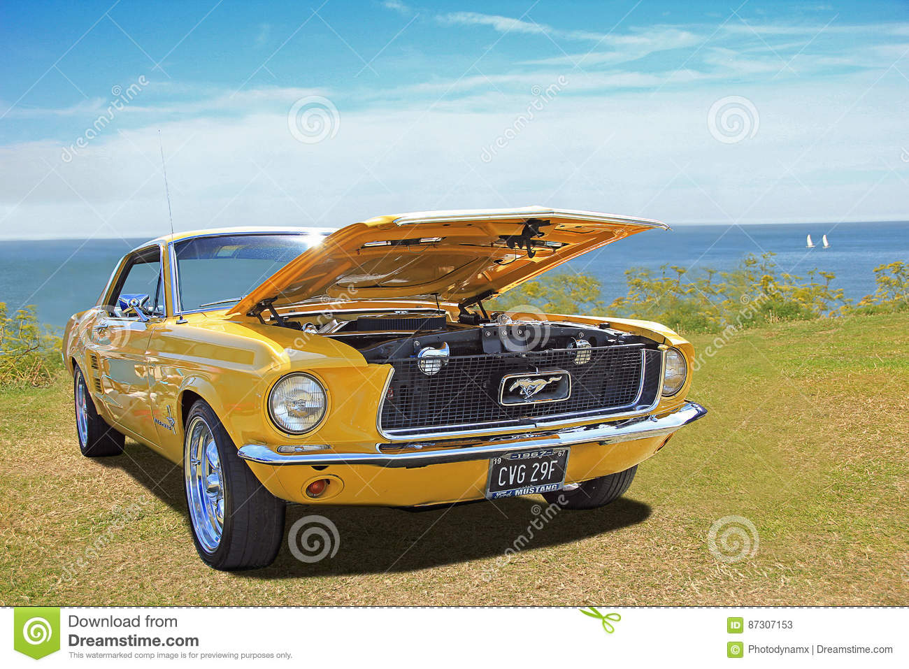 Vintage classic ford mustang