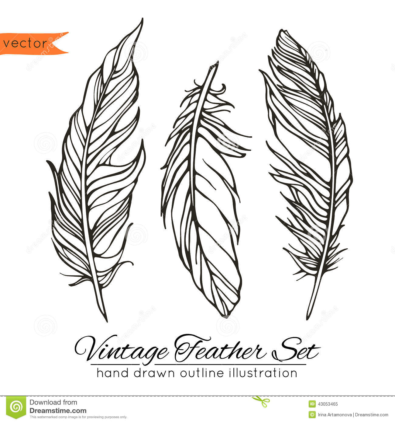 Line Art Feather : Vintage feather set isolated on white stock vector