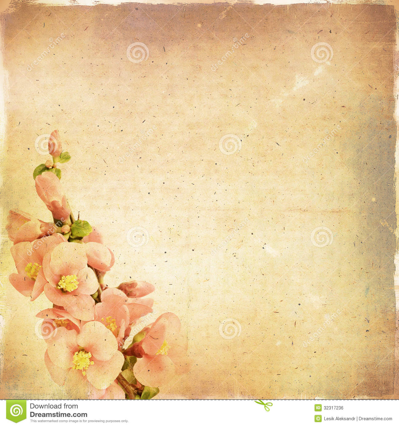 Vintage Floral Background Stock Photo Image Of