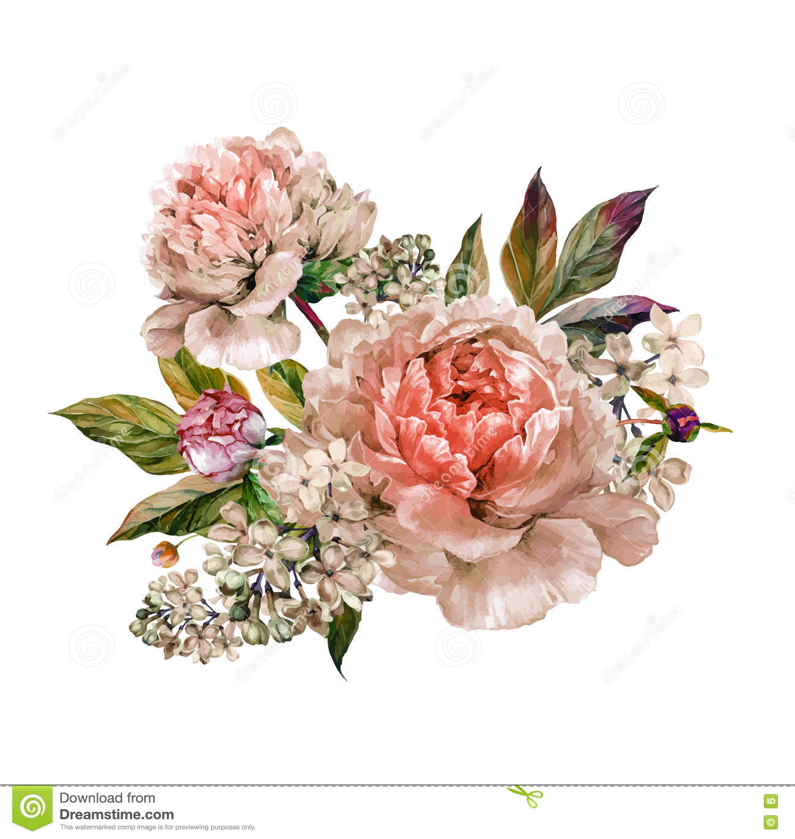 Vintage Floral Bouquet Peonies Stock Vector Image