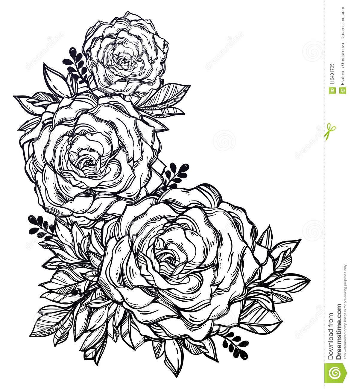Vintage Floral Highly Detailed Hand Drawn Rose Flower Stem With Roses And Leaves Stock Vector Illustration Of Nature Love 116401705