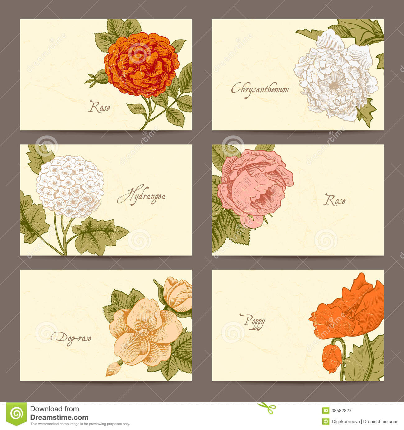 Vintage floral horizontal business cards stock vector illustration download comp reheart Gallery