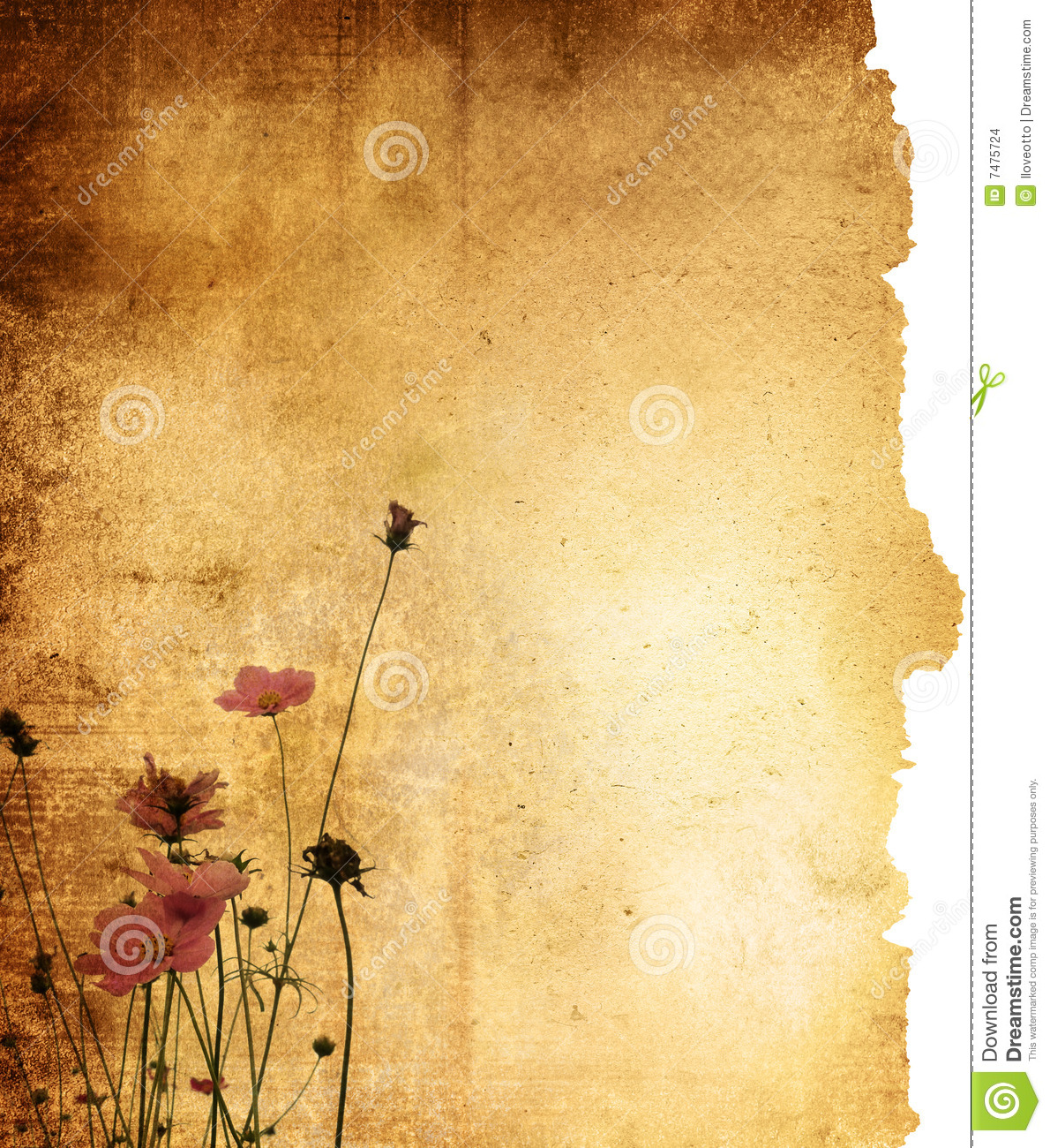 Vintage Flower Paper Background Stock Photo