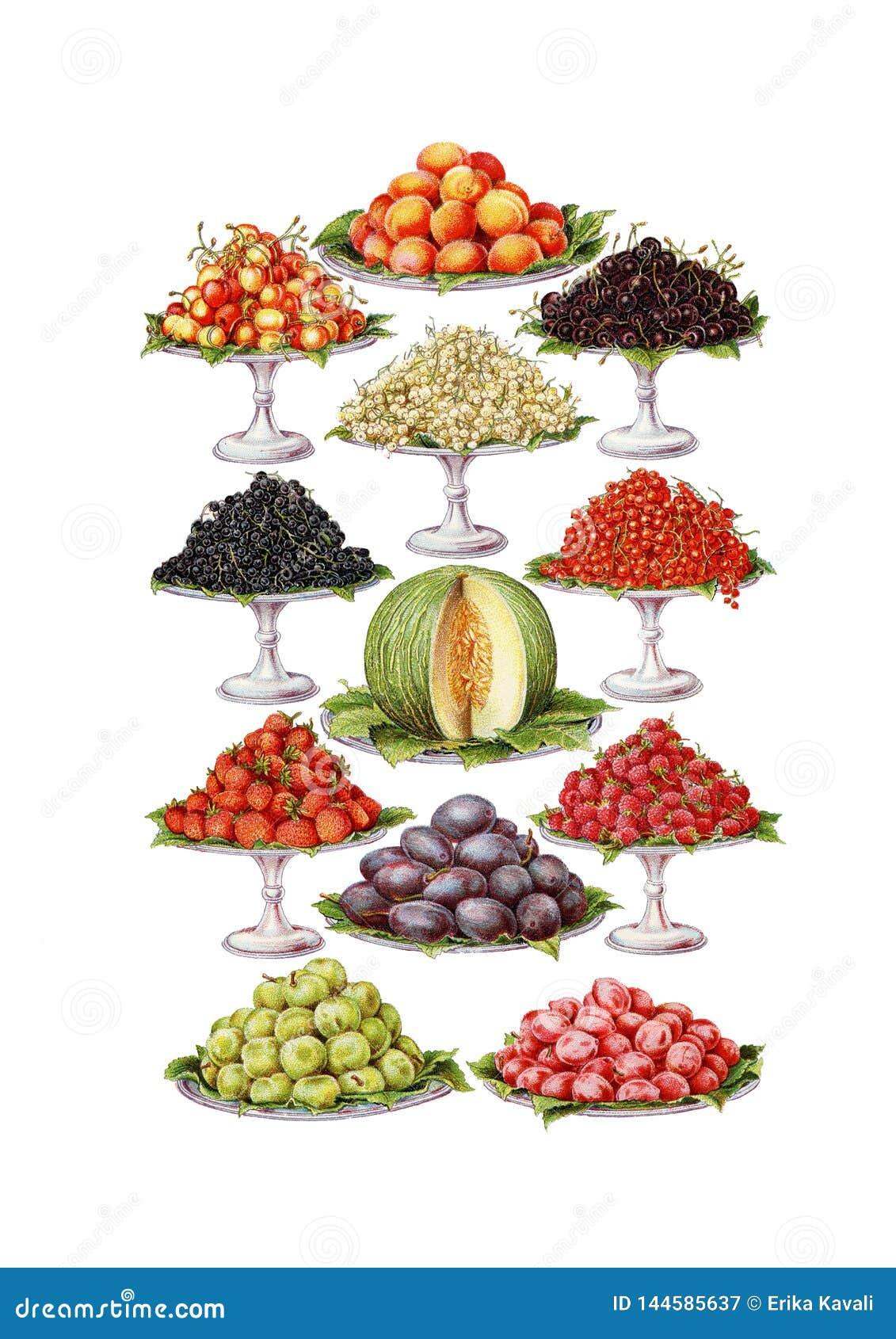 Vintage Food Fruits Clip Art Set Stock Illustration ...  Retro Clip Art Food