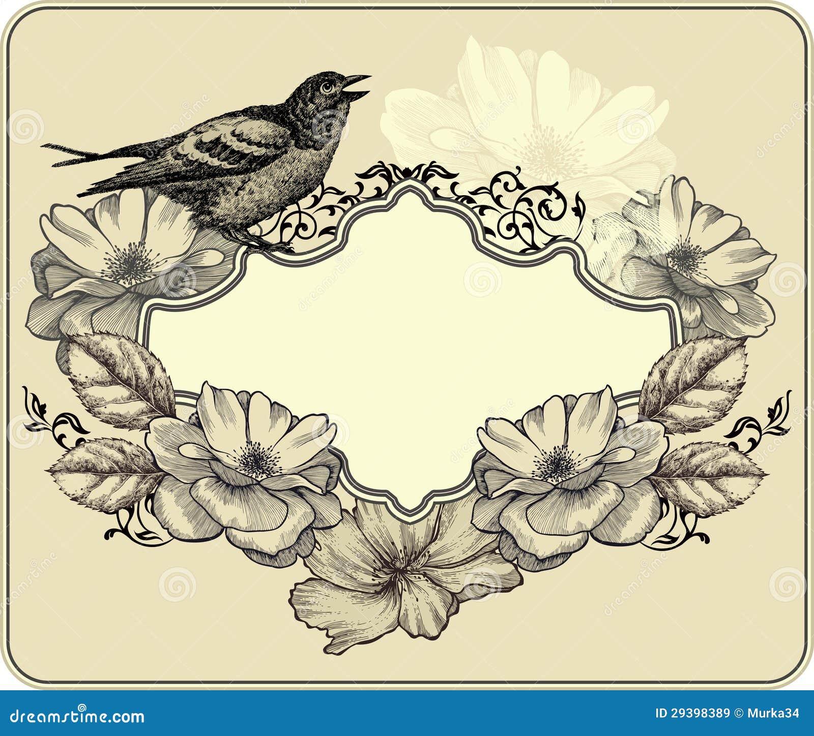 Vintage bird vector free download - photo#3