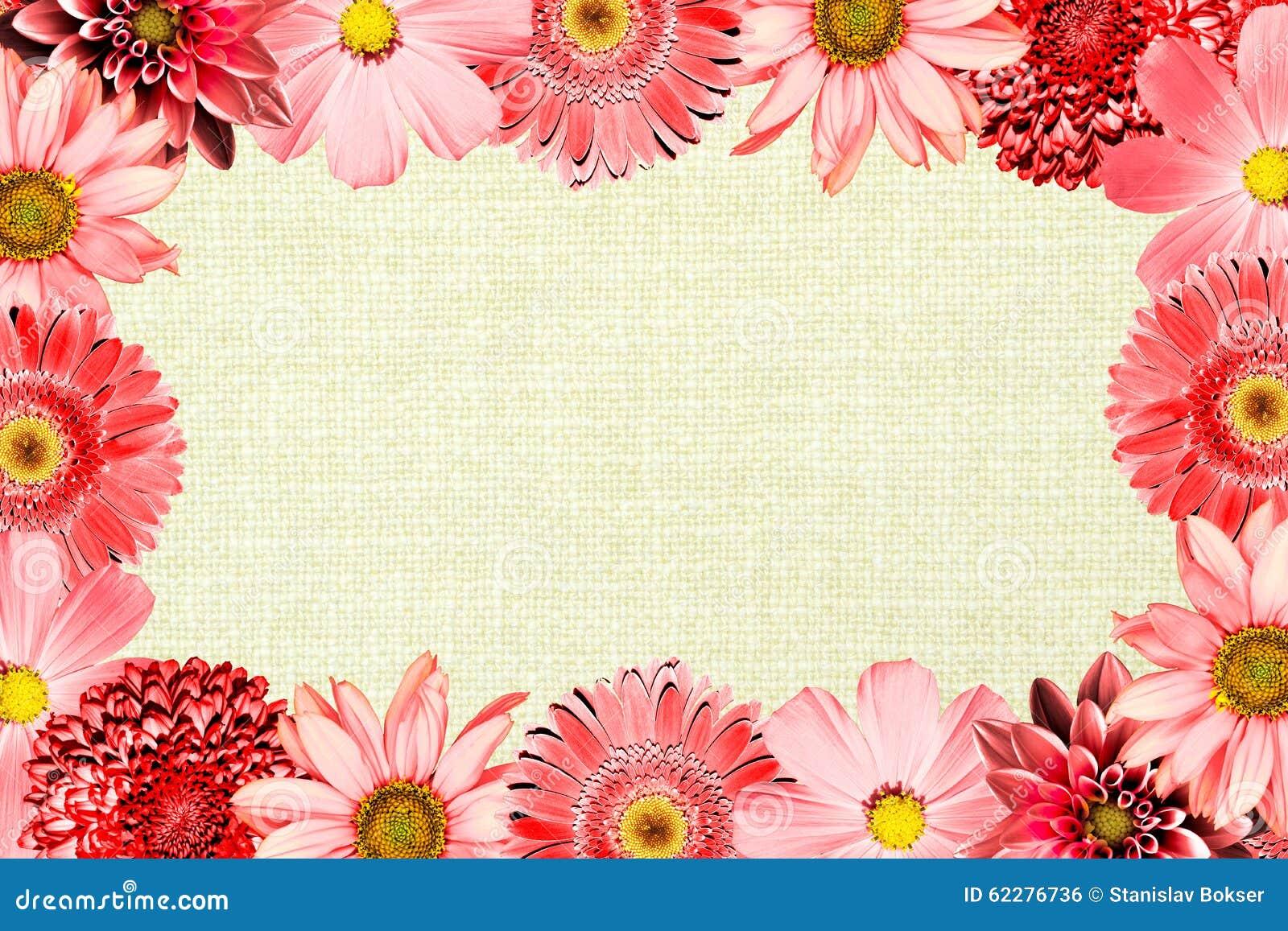 Vintage Frame With Red Flowers Collage Mix Gerbera, Chrysanthemum ...