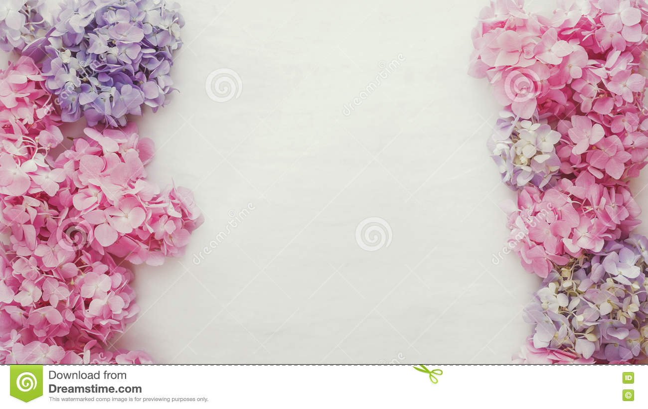 Vintage Fresh Hydrangea Floral Background Stock Image Image Of