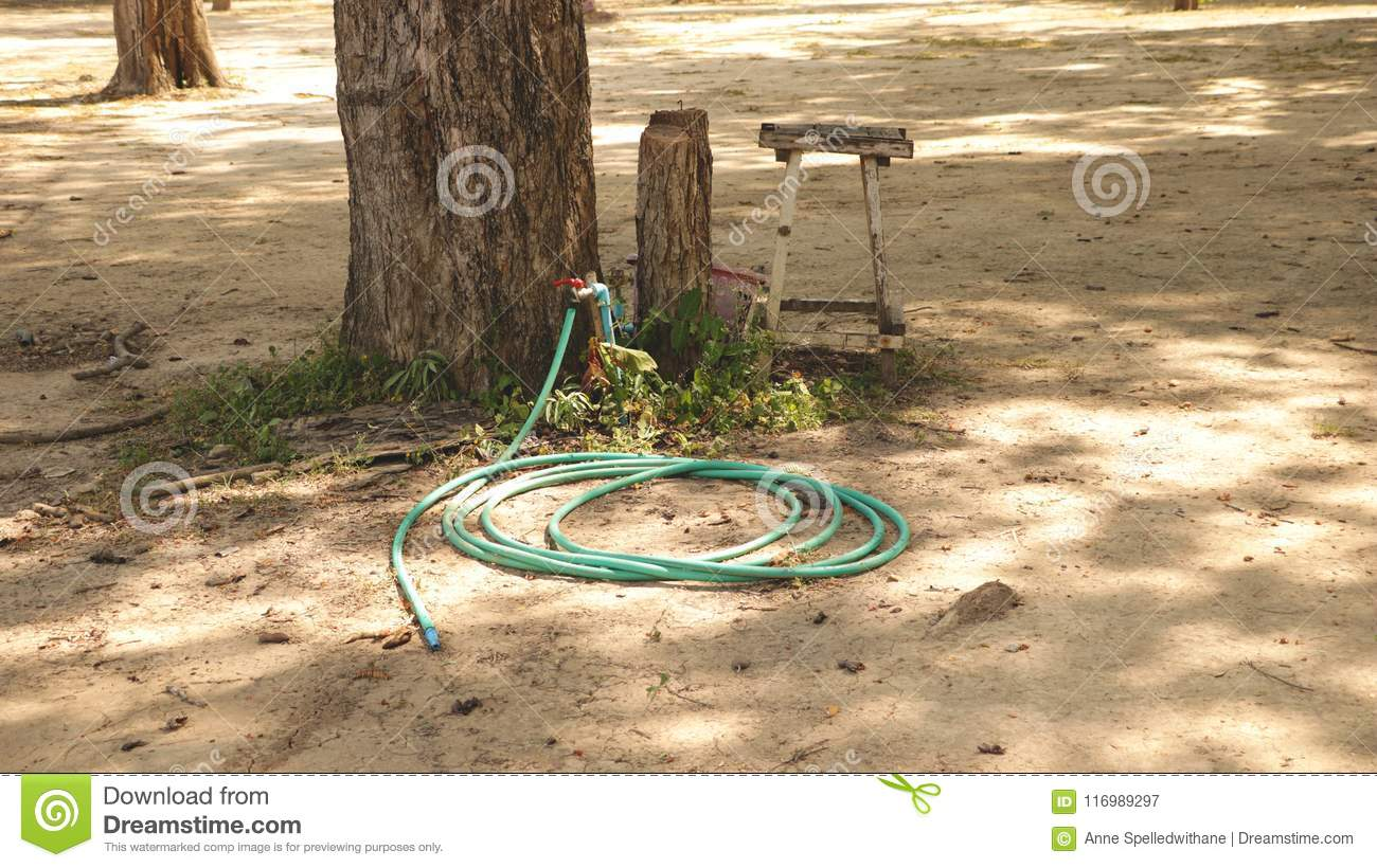 Vintage Green Water Hose And Red Valve In The Garden Under Big Tree ...