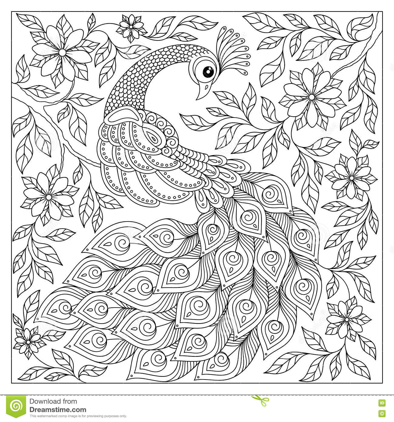 Vintage Hand Drawn Pattern Black And White Doodle Peacock