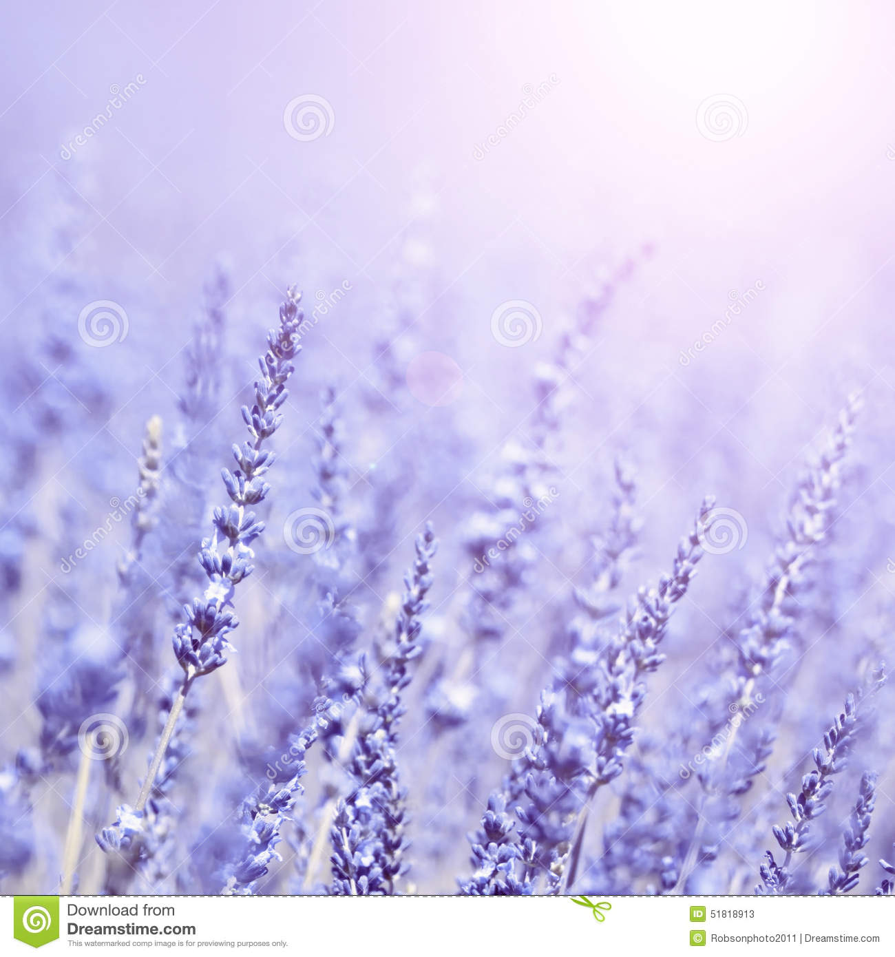 lavender vintage background - photo #3
