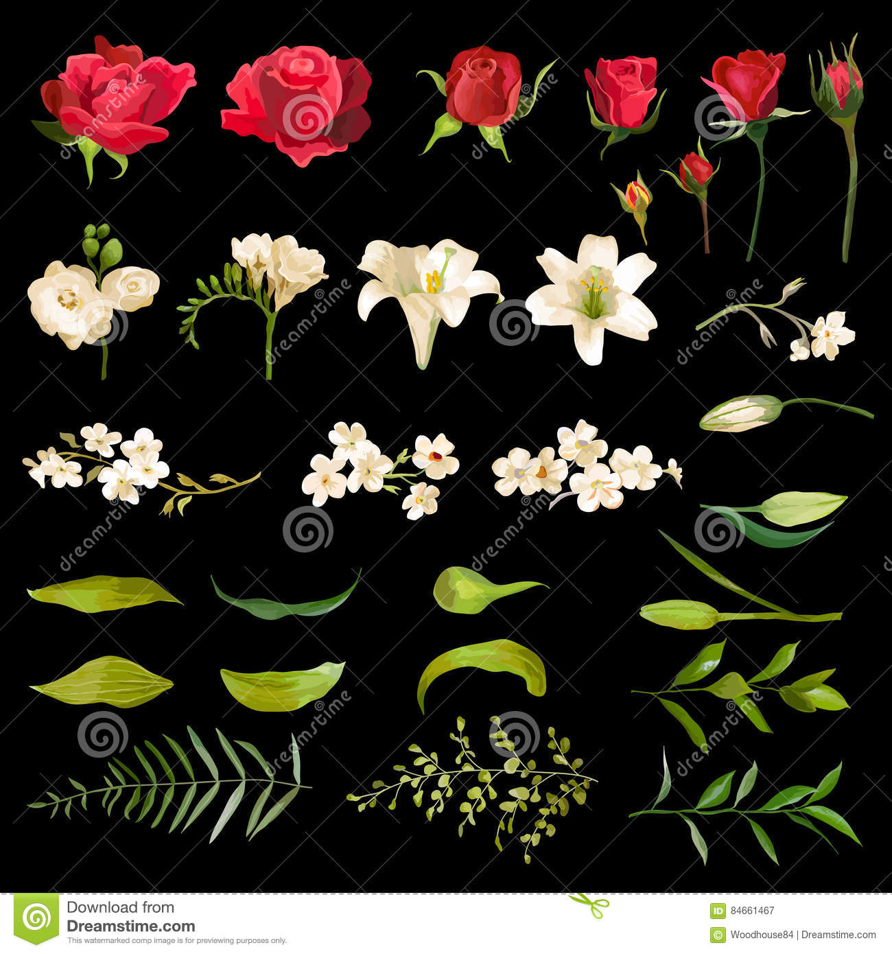 Vintage Lily And Rose Flowers Set In Watercolor Style Stock Vector