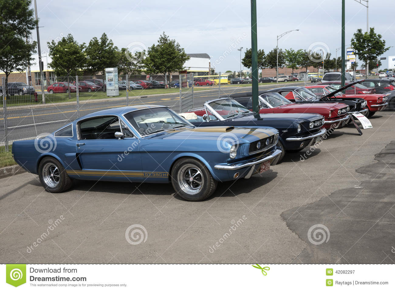 Vintage Mustang Row Editorial Photography Image 42082297