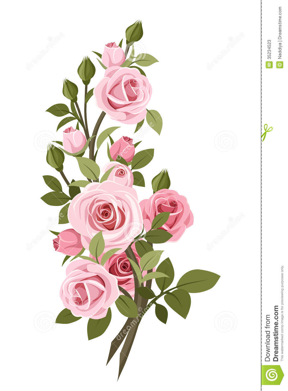 Vintage Pink Roses Branch Stock Vector Illustration Of