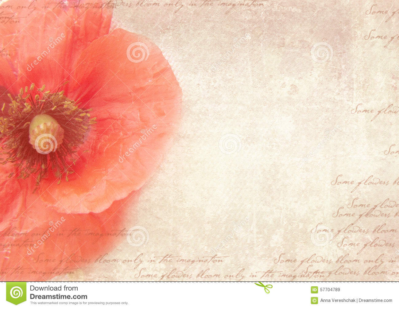 Vintage postcard template with poppy flower on shabby paper stock download comp mightylinksfo