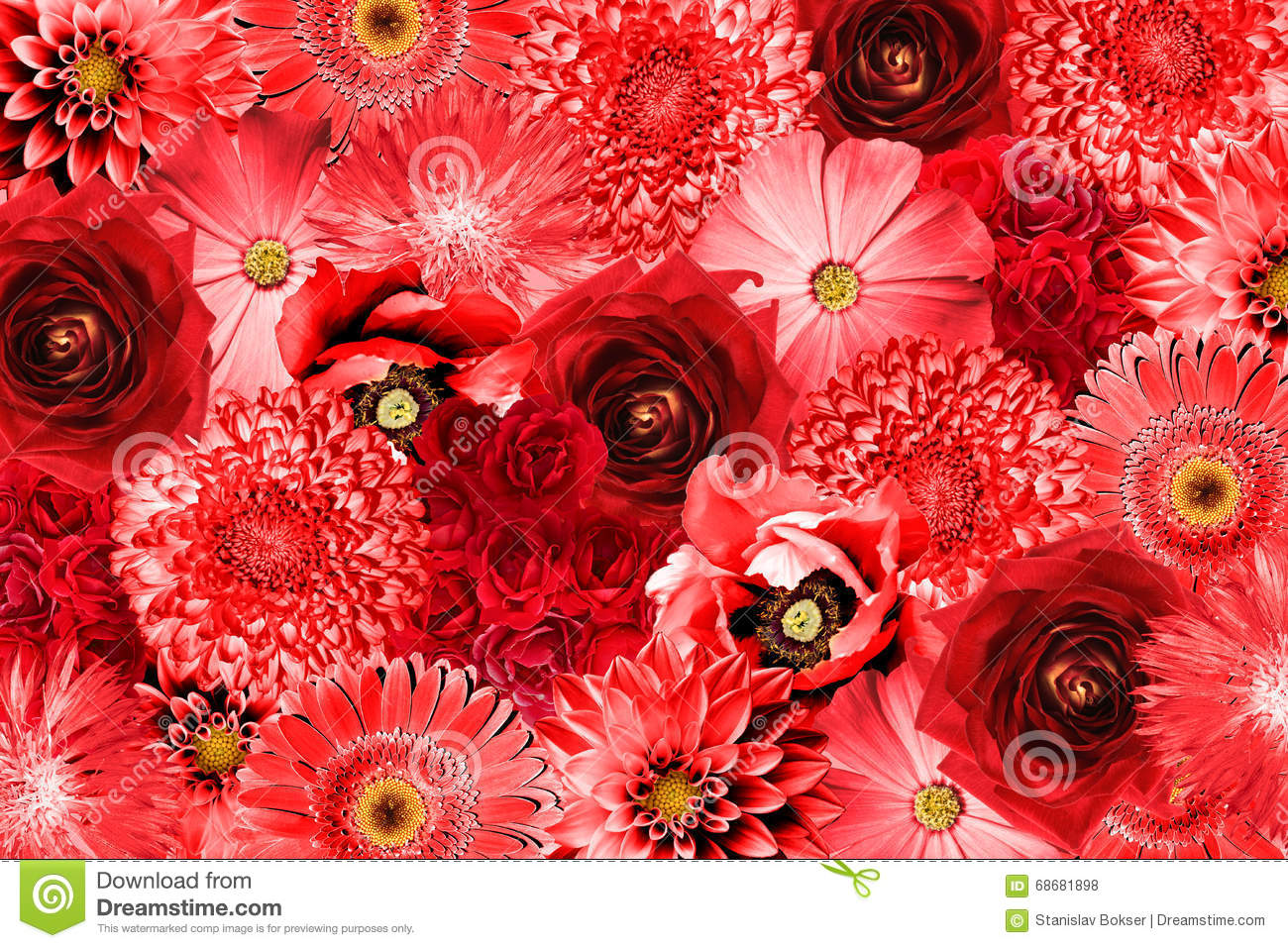 vintage red flowers collage stock photo image 68681898