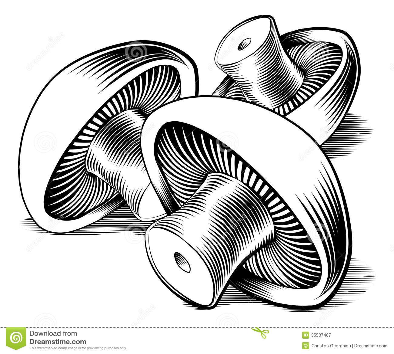 Classic Retro Illustration: Vintage Retro Woodcut Mushrooms Stock Vector