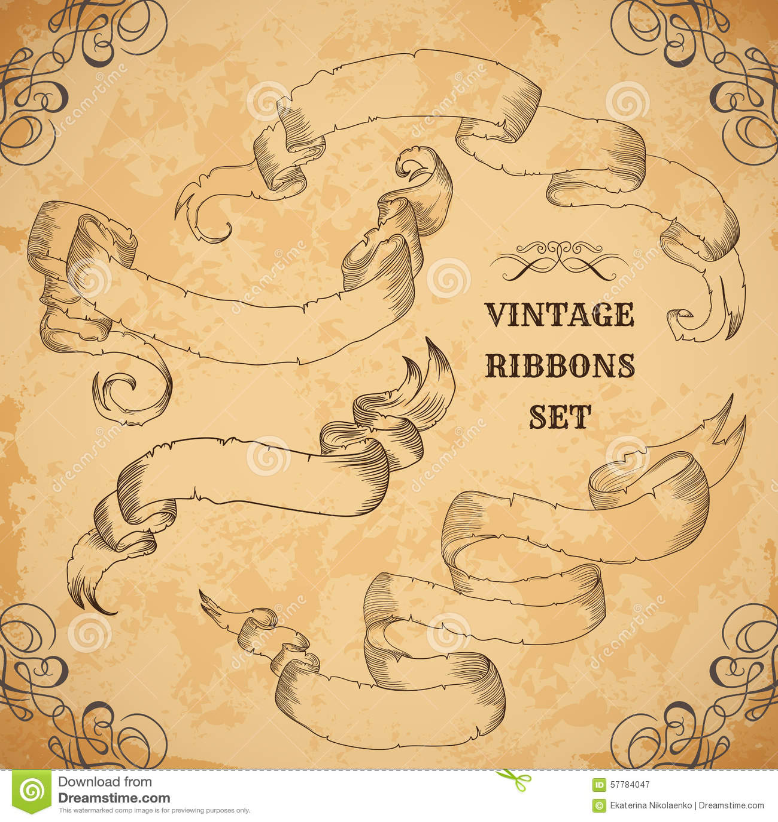 vintage ribbons set  vector illustration  engraved decorative ornate frames  victorian style