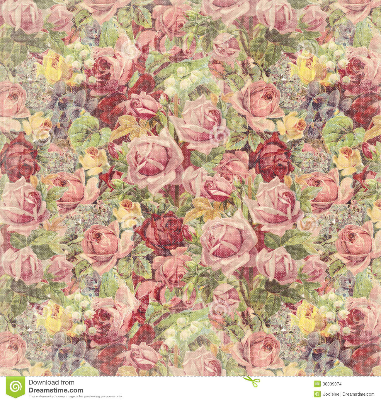 Vintage Rose Background Stock Photo 30809074 Megapixl