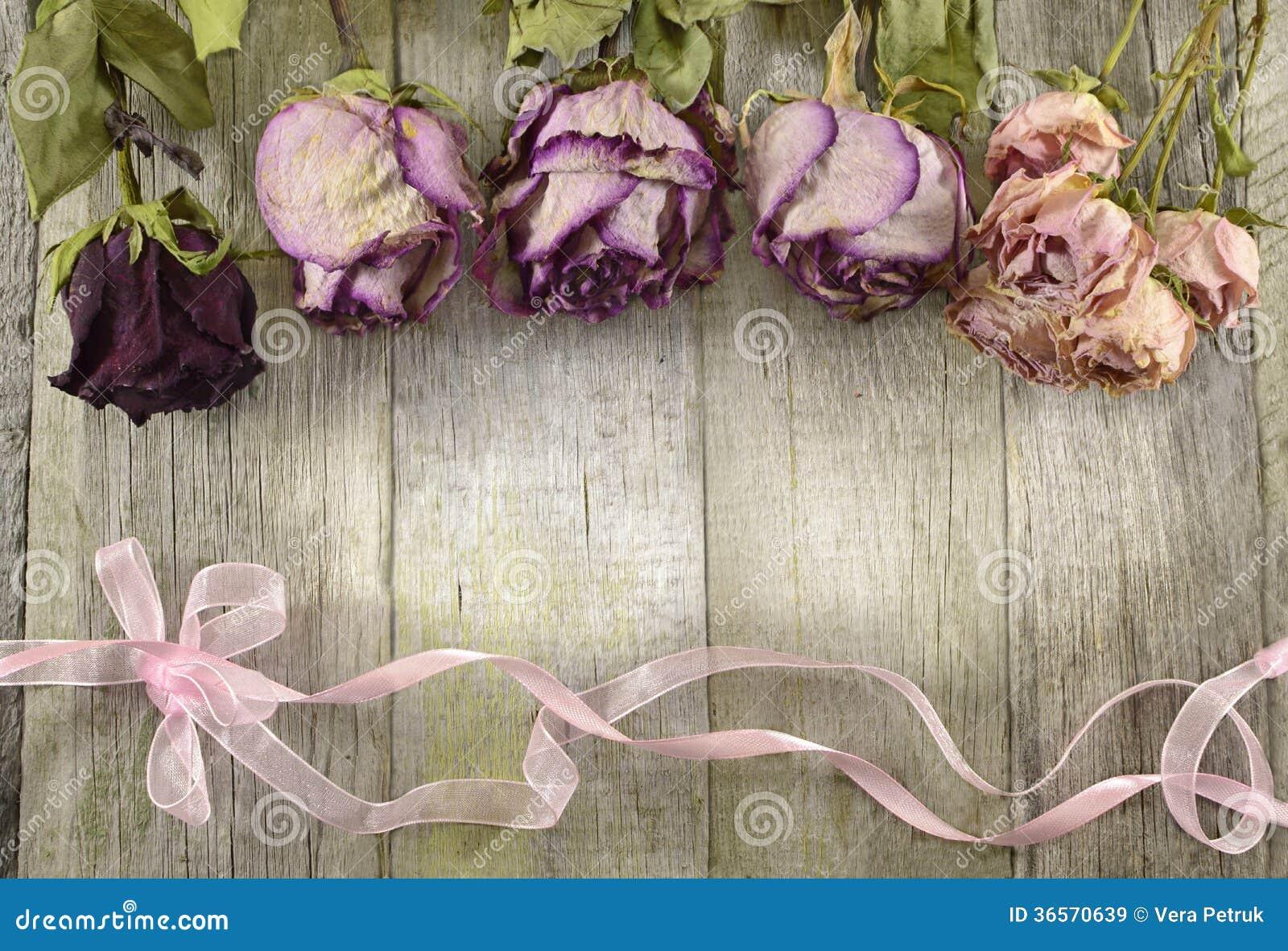 Vintage Rose Border On Wood Stock Image Image 36570639
