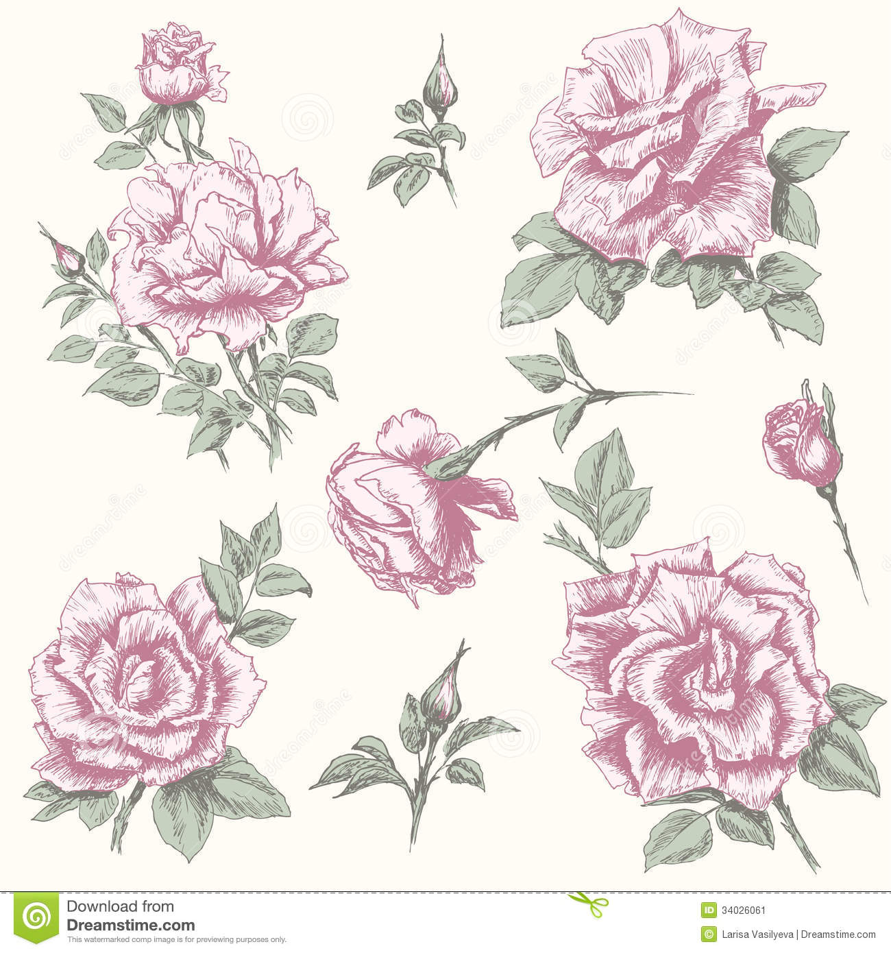 Illustration: Vintage Rose Collection